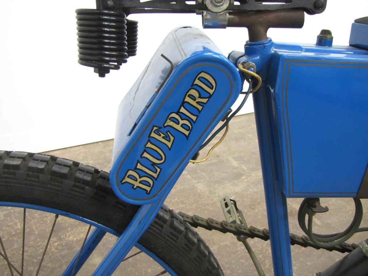 1902-blue-bird_18